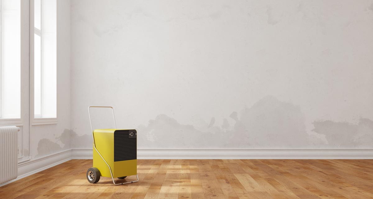 zu hohe luftfeuchtigkeit erkennen und behandeln. Black Bedroom Furniture Sets. Home Design Ideas
