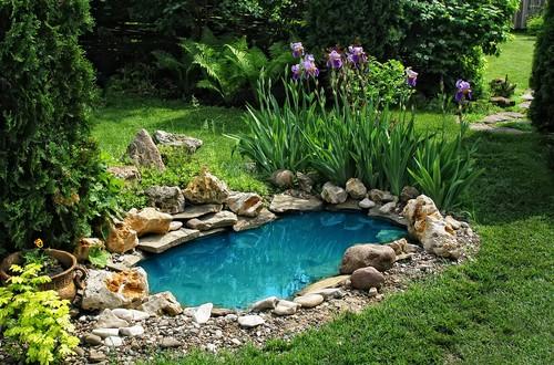 Eleganter Gartenteich