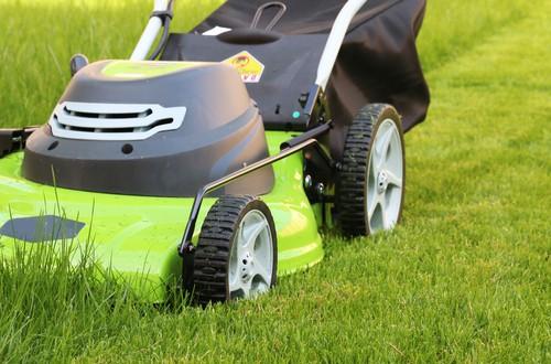 Mit dem Rasenmäher durch das Grün
